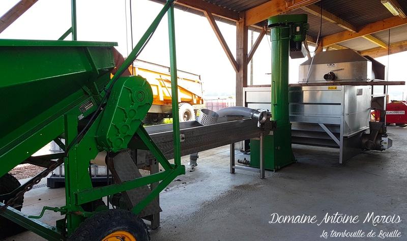fabrication-cidre-domaine-Antoine-Marois-Cambremer